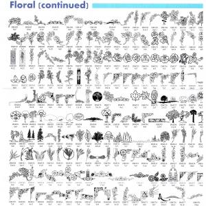 Floral Cont