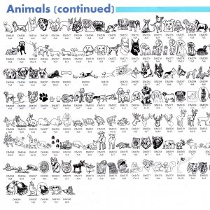 Animals cont